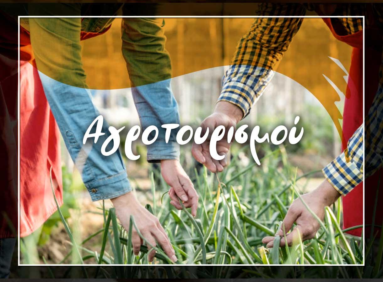n_agrotourismos